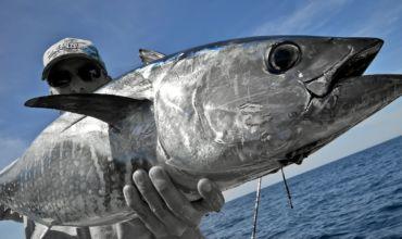 Pêche en mer en bateau
