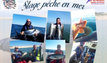 Stages Pêche en Mer 2019